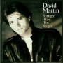 David Martin - Stronger Than The Weight